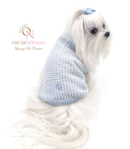 Maltese in blue sweater for small dogs