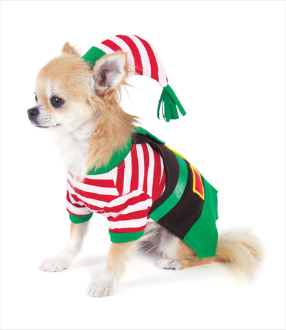 Chihuahua in the Santa's Elf Dog Costume