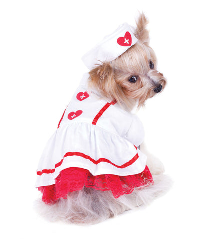 Sweetheart Nurse Dog Costume
