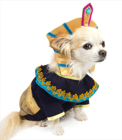 King Mutt Dog Costume