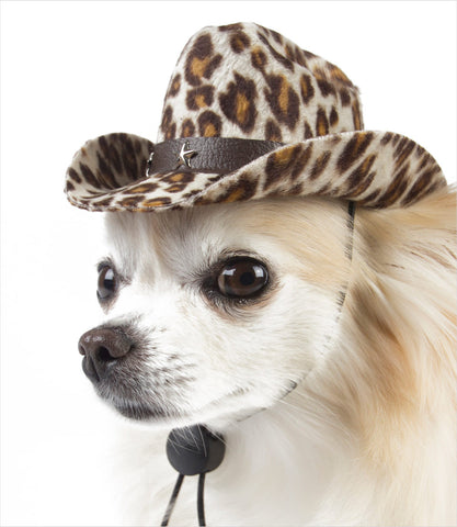 Chihuahua wearing tiger cowboy hat for dogs