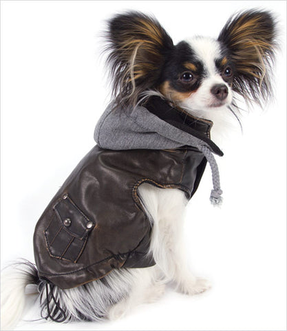 Dog Bomber Jacket