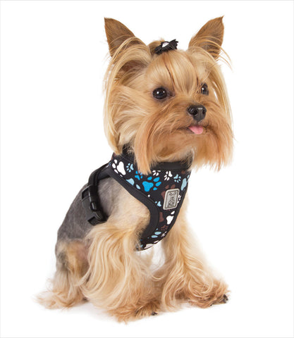 Cirque Sfot Walking Harness - Paw Print