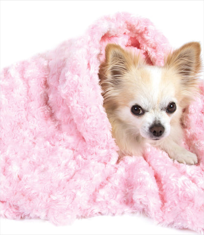 Pink rose petal dog blanket