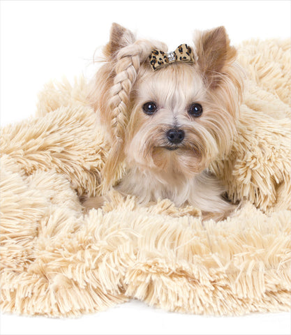Peluche Plush Camel Powder Puff Dog Blanket