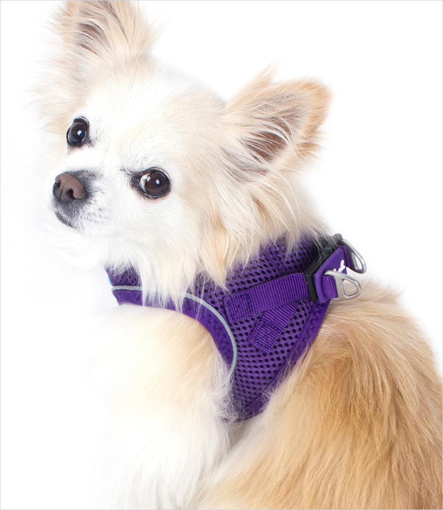 Plush Step In Air-Mesh Dog Vest Harness