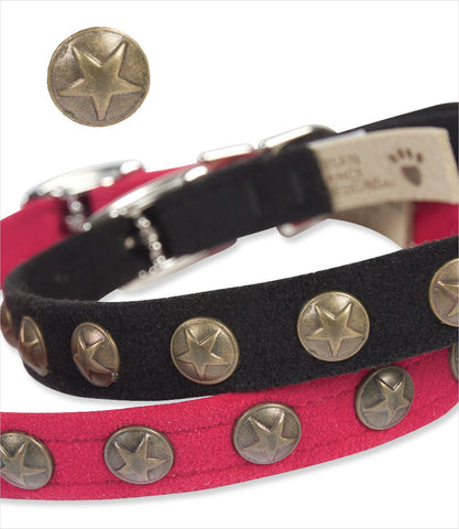 Bronze Stars dog collars - Susan Lanci