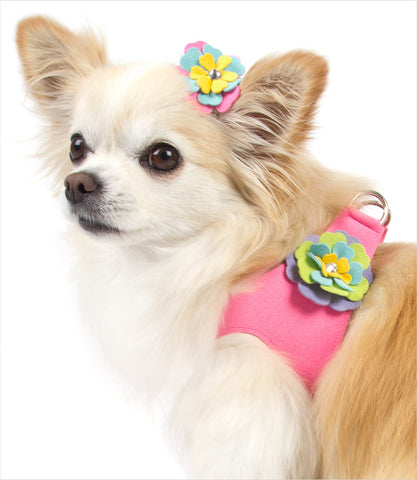 Chihuahua wearing Fantasy Flower Step In Harness