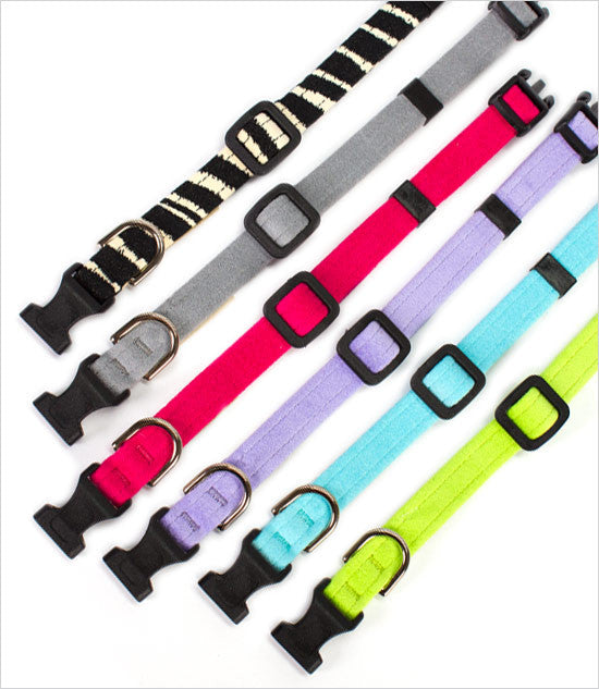 Outlet: Quick Release Dog Collars by Susan Lanci