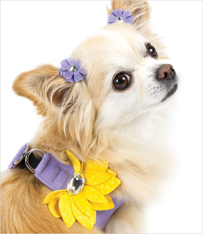 Lily Dog Harness Lavender Chihuahua