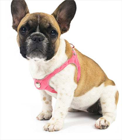 Pink Scrappy Step In Dog Harness
