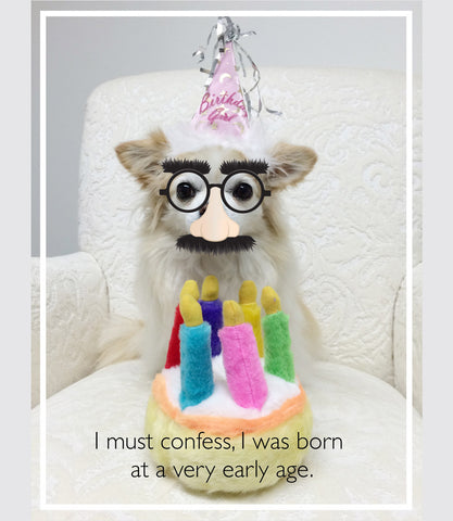 Dog with singing birthday cake toy