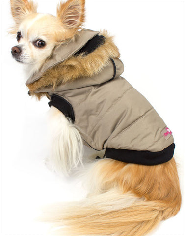 Dog vest with hood in grey