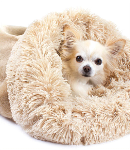 Susan Lanci Camel Powder Puff Cuddle cup