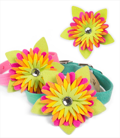 Island Flower Dog Collar - Susan Lanci