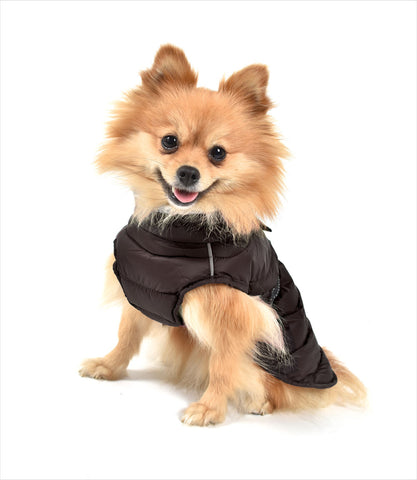 Extreme All Weather Dog Coat