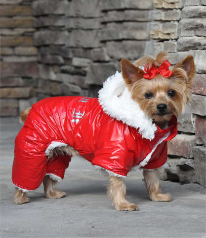 Red Winter Dog Snowsuit