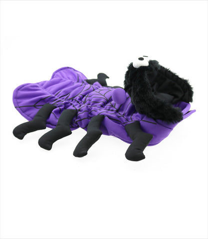 Spider Dog Costume on Yorkie