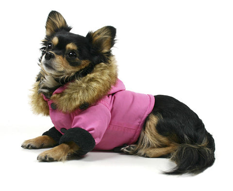 Eskimo Dog Coat Pink