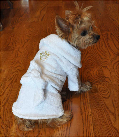Yorkie in Gold Crown Bath Robe - Front View