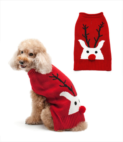Red Nose Reindeer small dog sweater