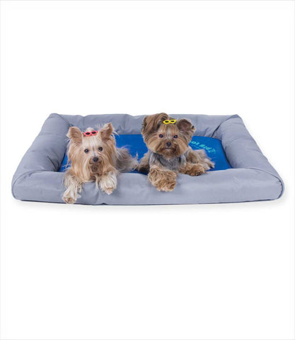 Yorkies in the Cool Bed Deluxe