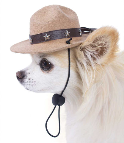 Park Ranger Hat for Small Dogs