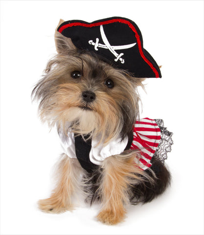 Lady Pirate Dog Costume - Misa Minnie