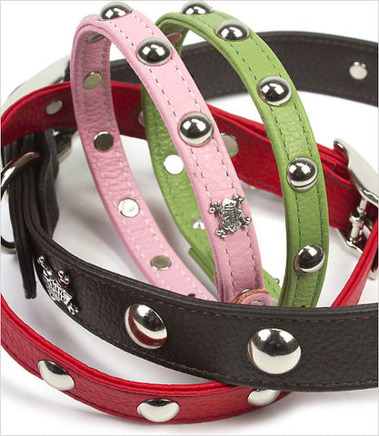 Domed Rivet Dog Collar Group