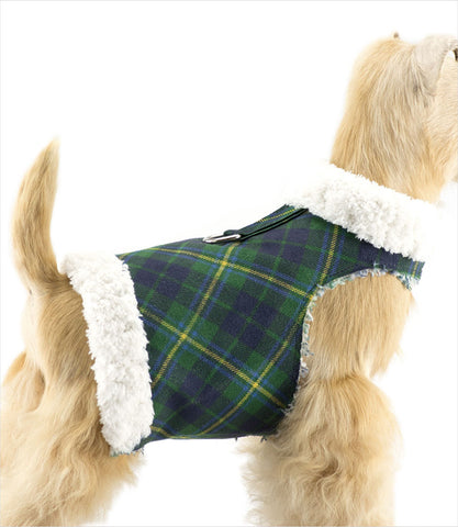 Susan Lanci Scotty Plaid Bowzer Dog Harness Coat