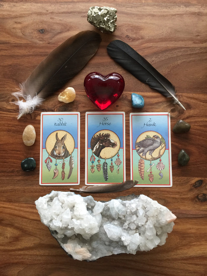 Intuitive Animal Medicine Card Reading
