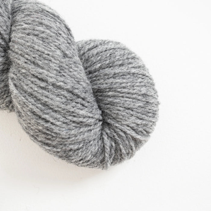 American Cheviot - Knotty Lamb
