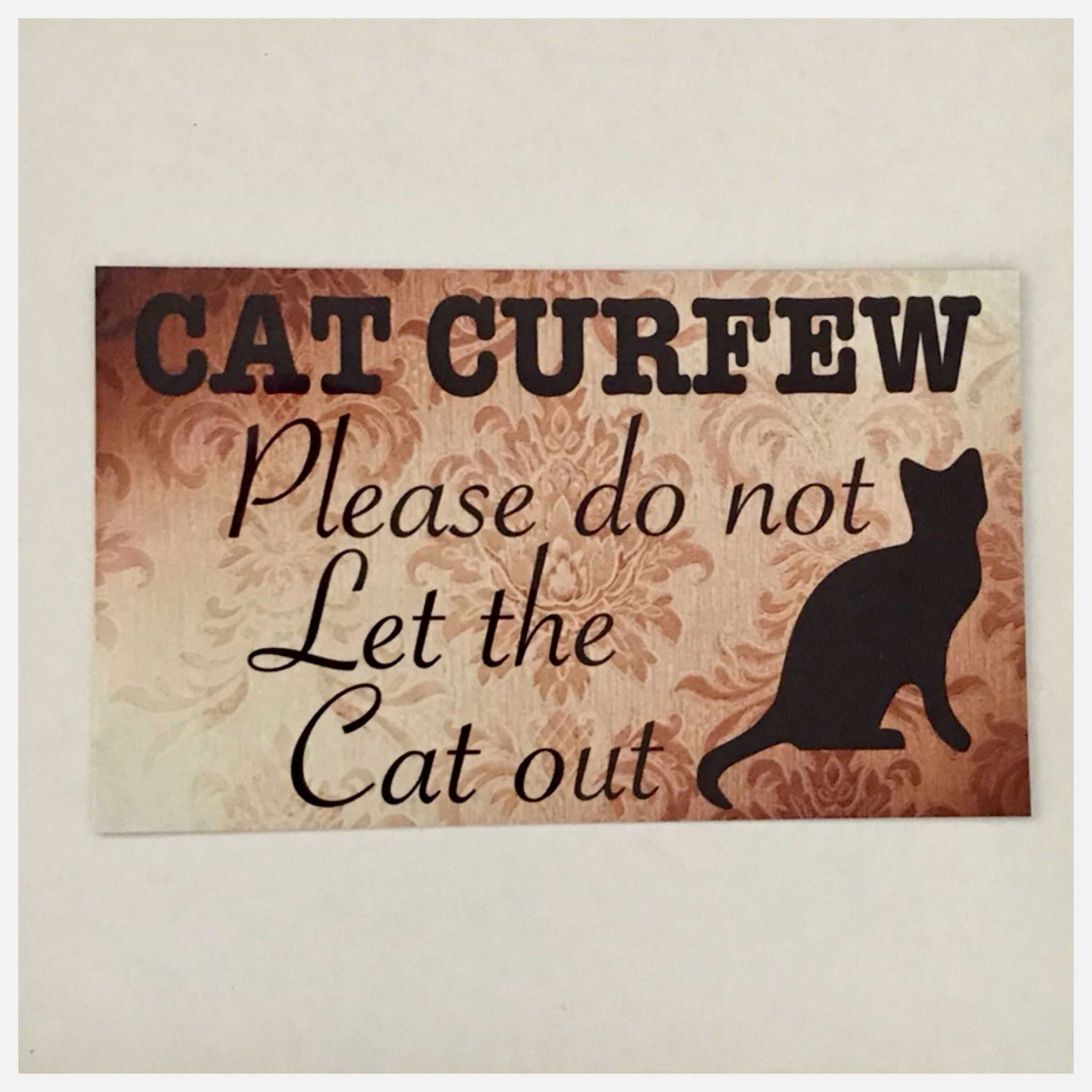 Cat Curfew Sign