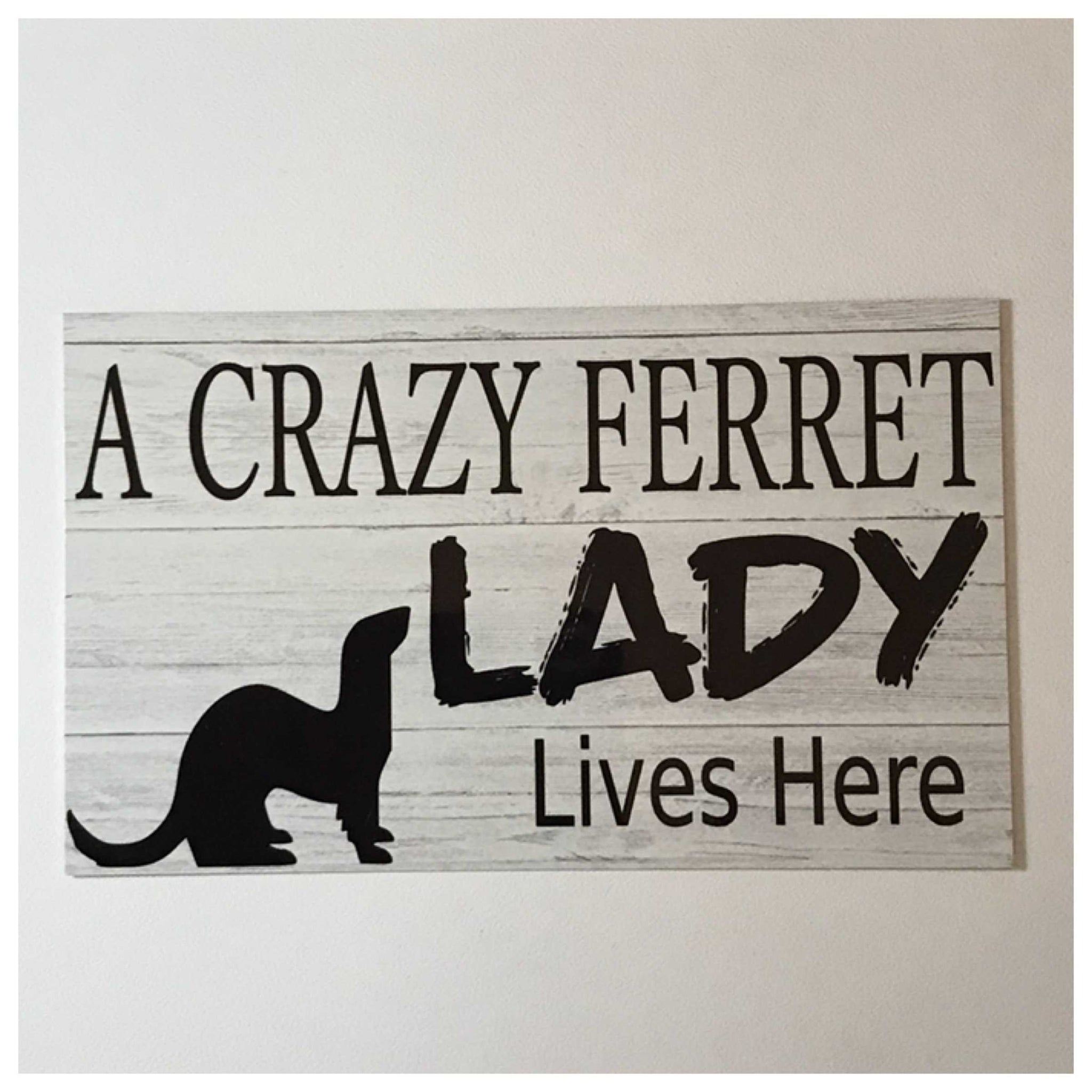 A Crazy Ferret Lady Lives Here Sign - The Renmy Store