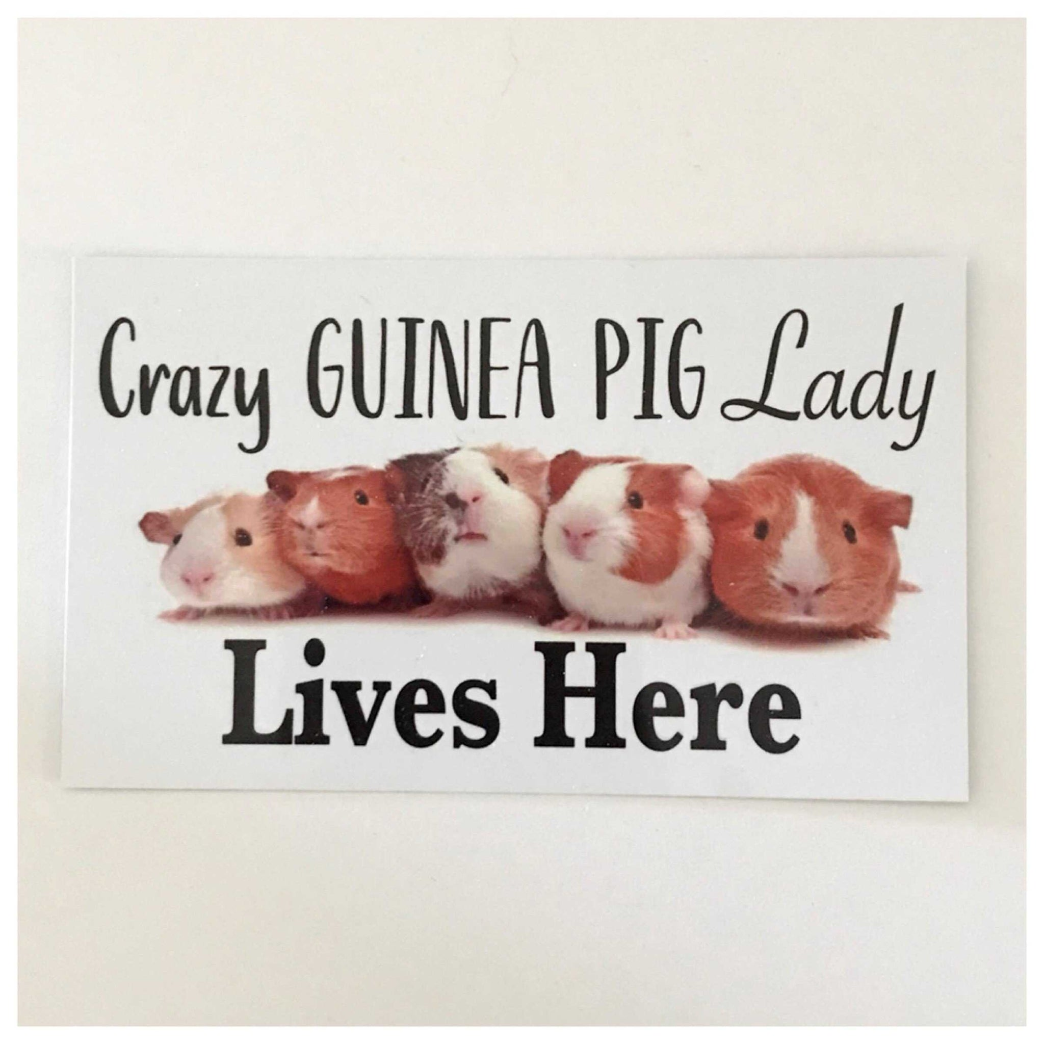 A Crazy Guinea Pig Lady Lives Here Sign | The Renmy Store