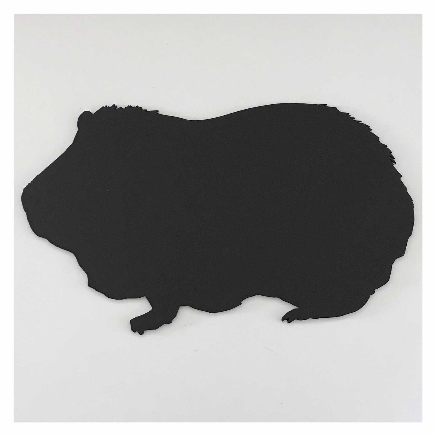 Blackboard Guinea Pig Pet