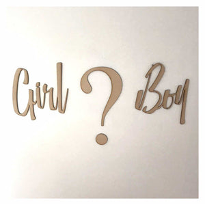 Girl Or Boy Baby Shower Kids Question Mark Word Wall Quote Art DIY Raw MDF Timber - The Renmy Store