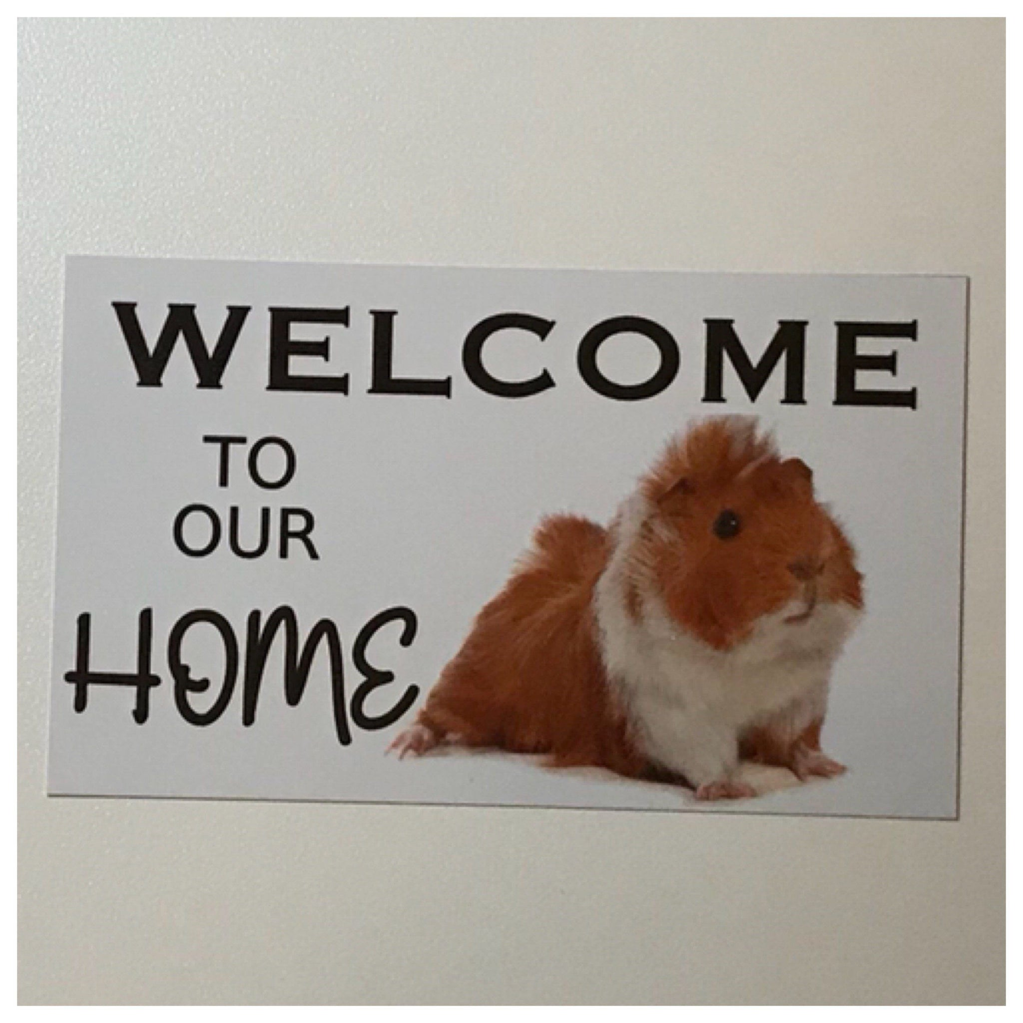 Welcome To Our Home Cute Guinea Pig Sign Wall Plaque or Hanging Hutch Pet Plaques & Signs The Renmy Store