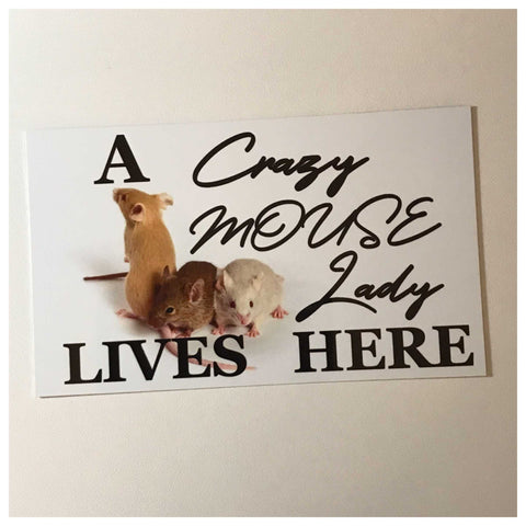 A Crazy Mouse Lady Lives Here Sign Wall Plaque or Hanging - The Renmy Store
