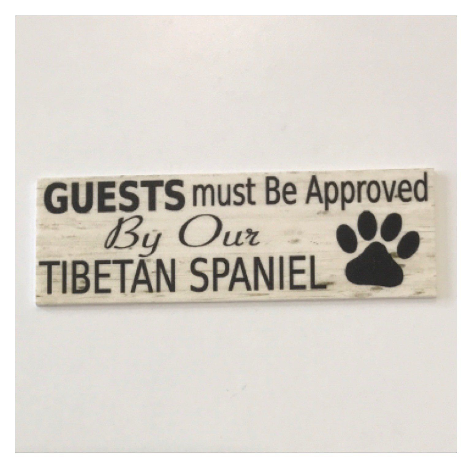 Tibetan Spaniel Dog Guests Must Be Approved By Our | The Renmy Store
