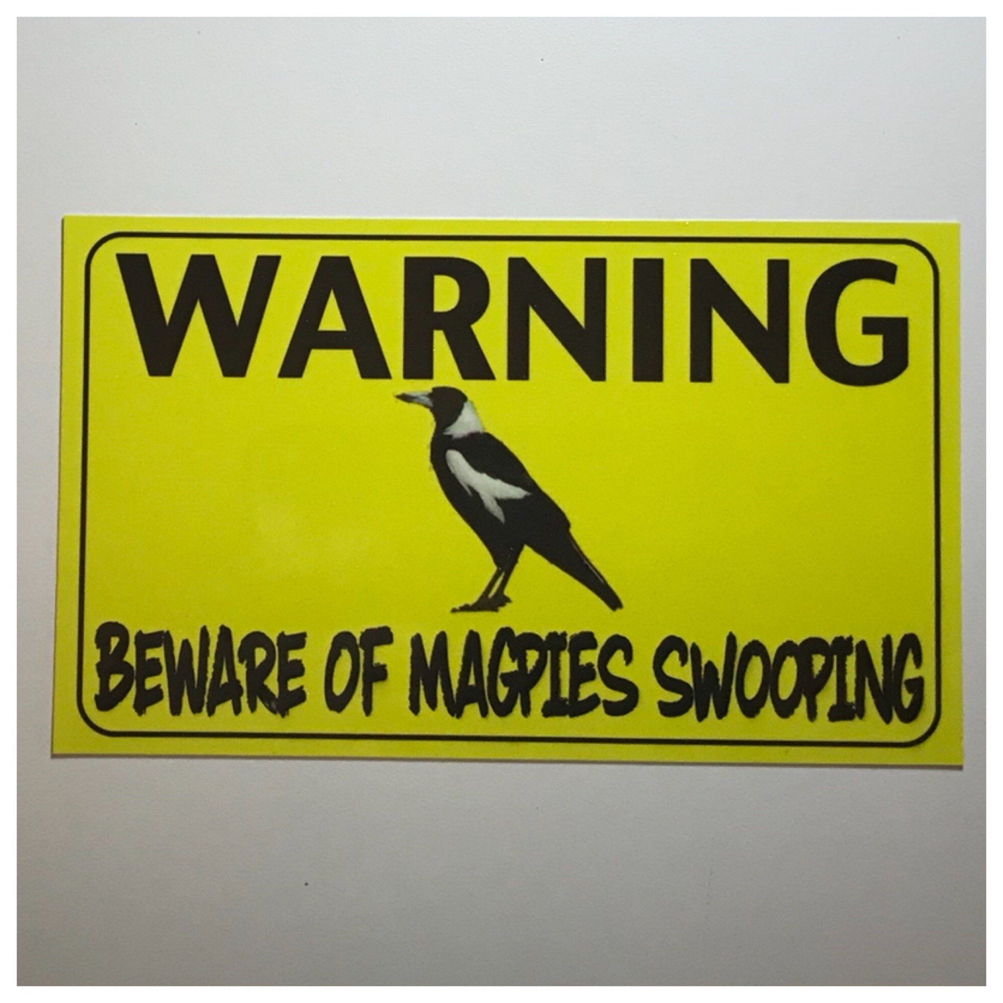 Warning Beware Of Magpies Swooping Sign - The Renmy Store