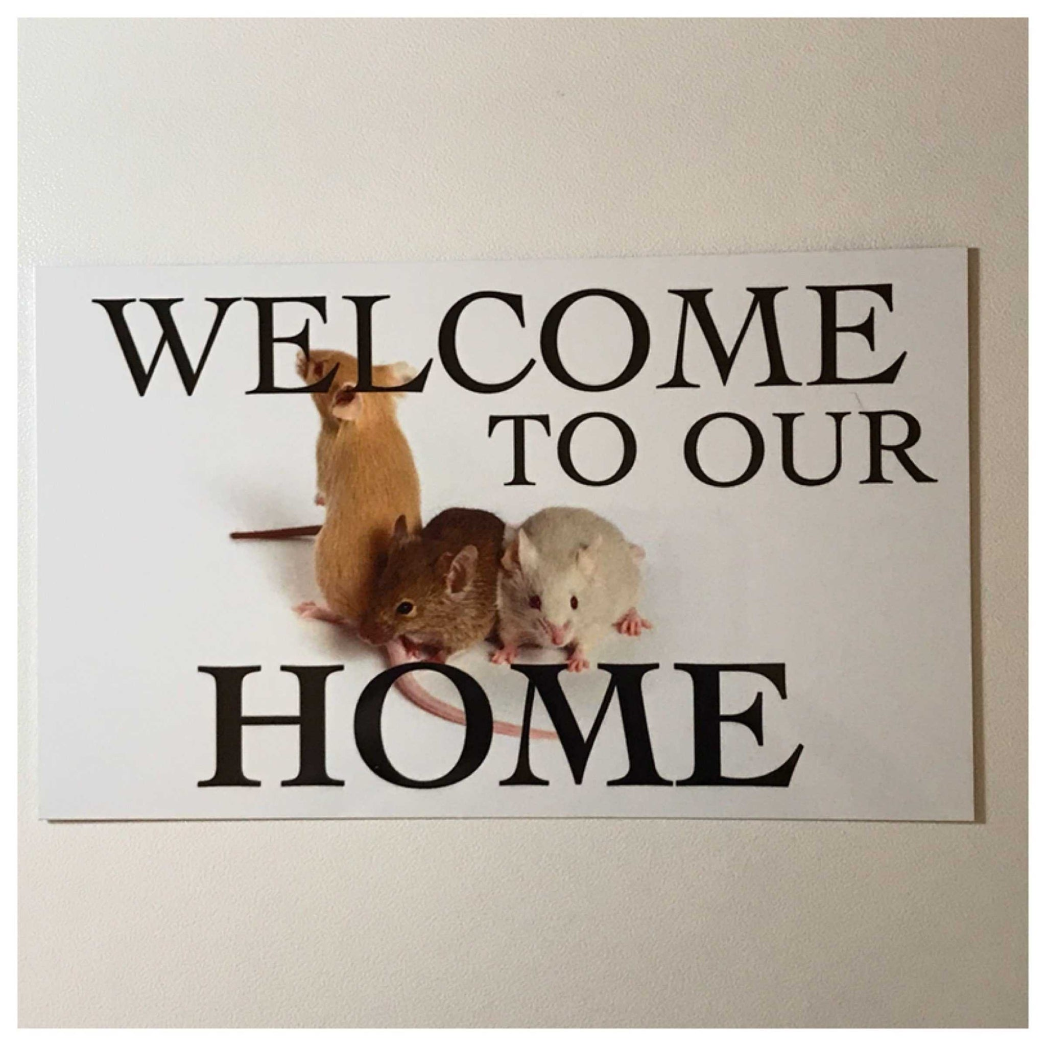 Mouse Mice Welcome To Our Home Sign