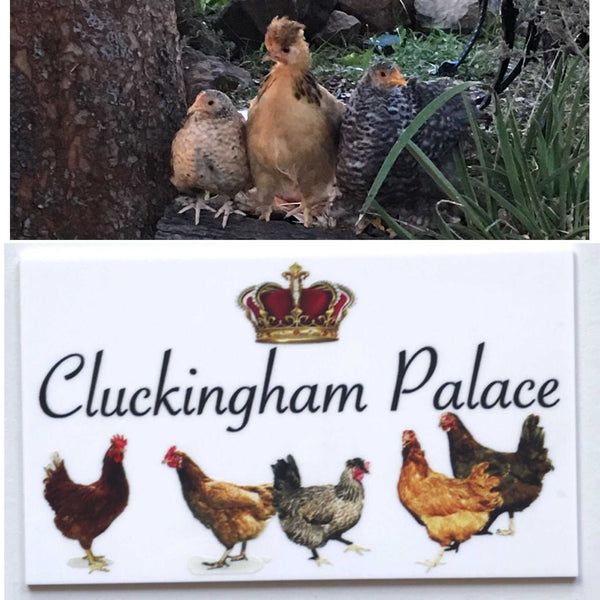 Cluckingham Palace Chicken Coop Sign - The Renmy Store