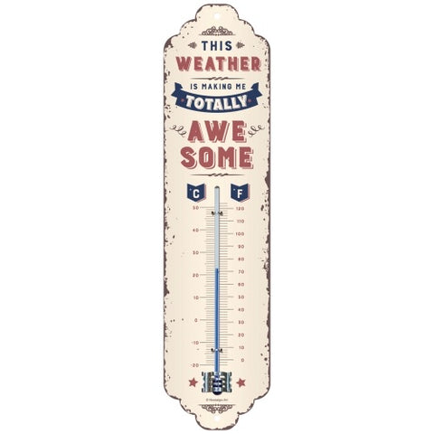 Thermometer Weather Temperature Awesome - The Renmy Store