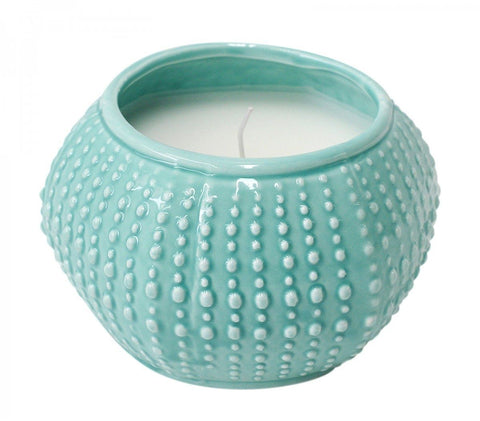 Shell Candle Urchin Shell