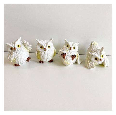 Owl Set of 4 Cheeky Birds