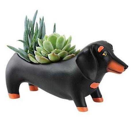 Dachshund Dog Black Pot Plant