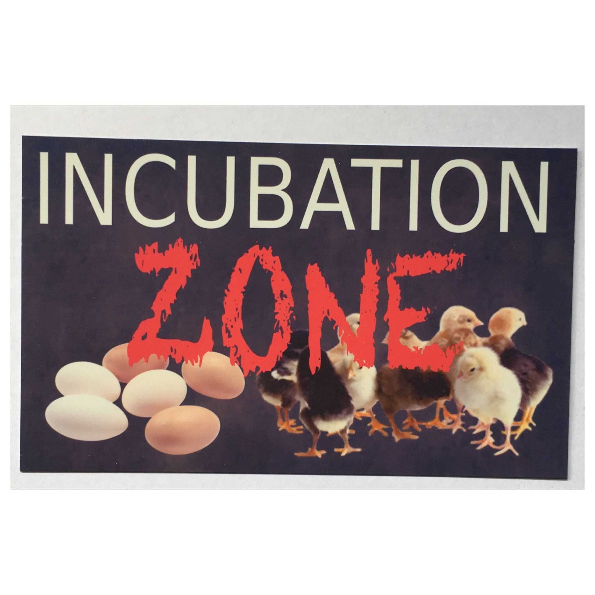 Chicken Incubation Zone Baby Chicks Eggs Sign | The Renmy Store