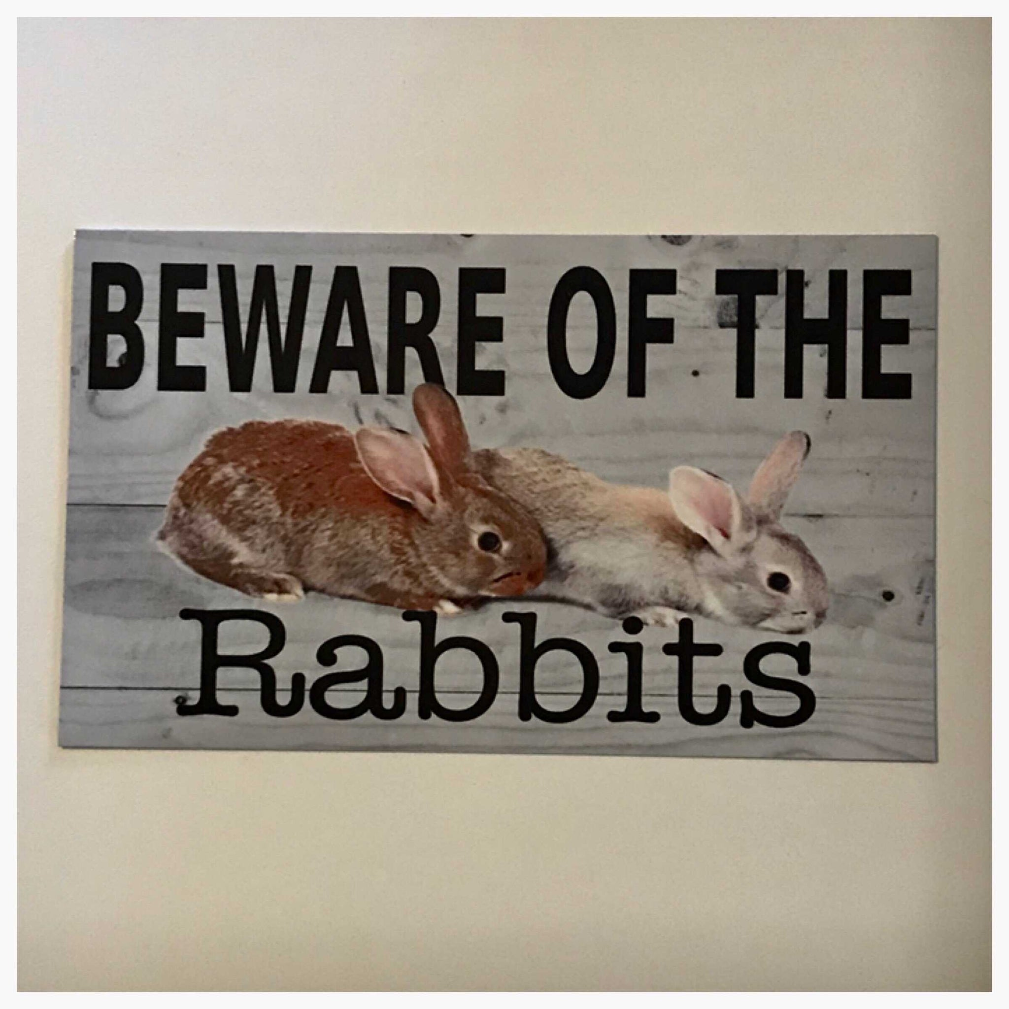 Beware Of The Rabbits Sign | The Renmy Store