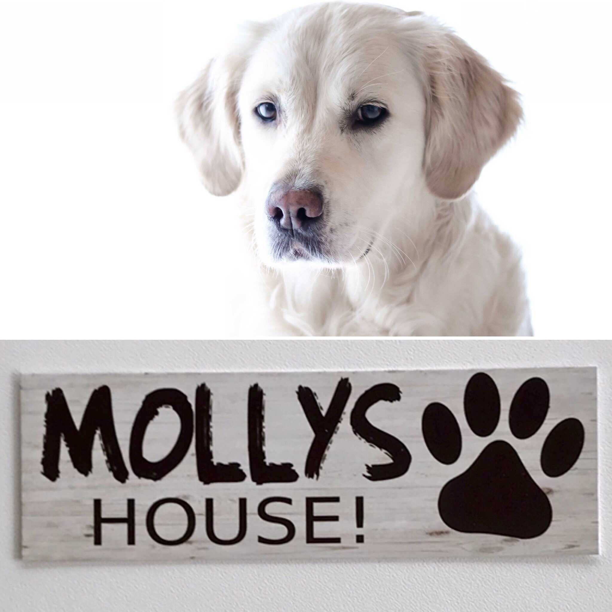 Custom Your Dog Name House Kennel Sign - The Renmy Store
